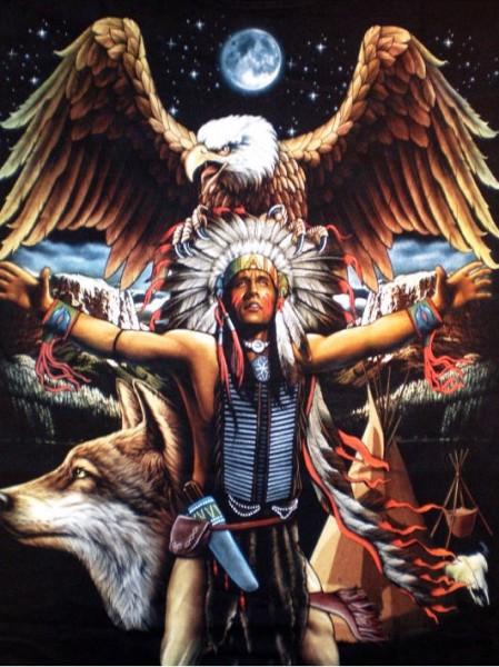 T-Shirt - Adler, Indianer, Wolf - beidseitig farbig bedruckt