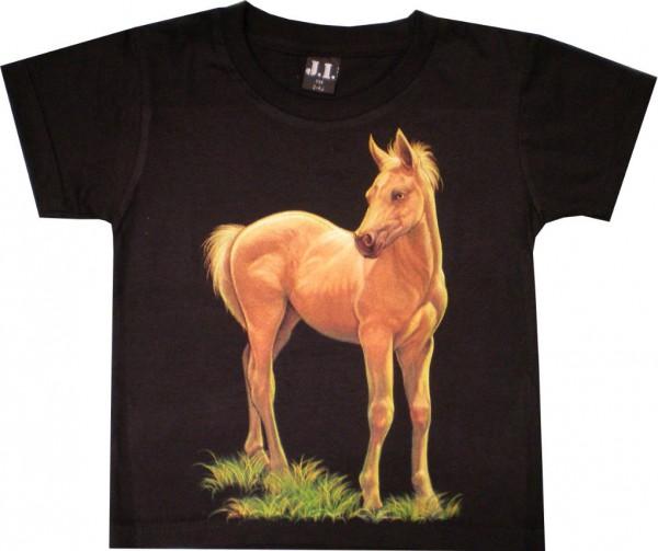 Kinder T-Shirt mit Fohlen