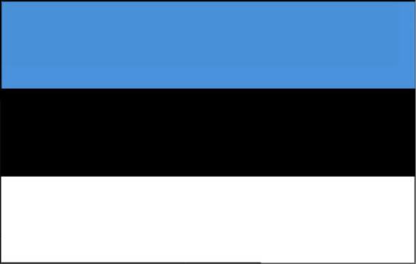 Länderfahne Estland