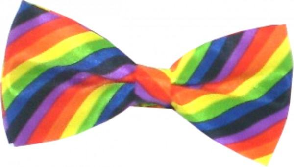 Fliege IQ1896 - seidig glänzende Fliege - Regenbogen-Farben