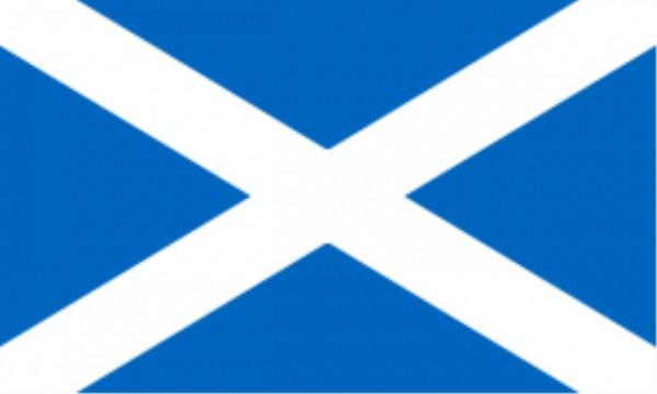 Stockfahne / Stockflagge Schottland