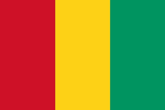 Länderfahne Guinea