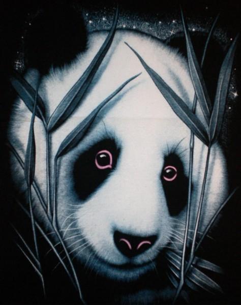 Kinder T-Shirt mit Panda